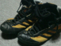 Wrestlingshoes