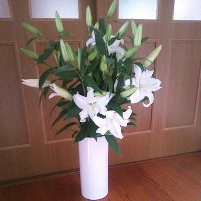 150514_flowerstomyparents