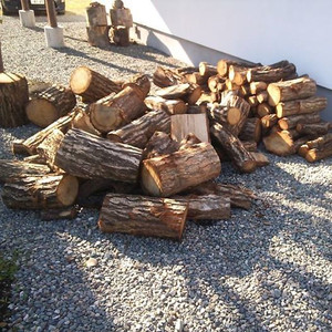 150516_firewoodsforthisyear