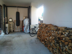 160813_firewoods1