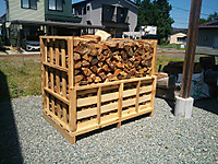 160813_firewoods4