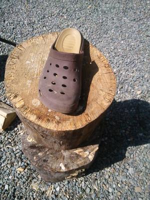 160825_big_firewood