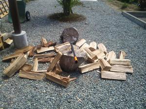160820_firewoods
